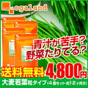 サプリメント supplement ビタミン ダイエット