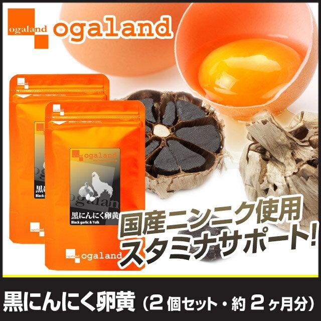 にんにく卵黄 約2ヶ月分 サプリメント にんにく 送料無料 サプリ 【F】 _A10【oga0302】
