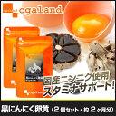 にんにく卵黄 約2ヶ月分 サプリメント にんにく 送料無料 サプリ 【F】 _A10