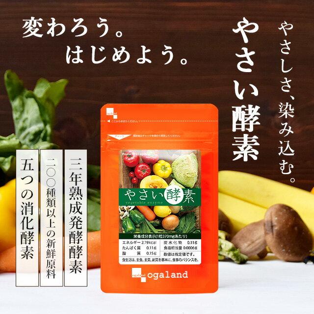 やさい酵素 (約3ヶ月分) ダイエット サプリメント 送料無料 野草 野菜 酵素 生酵素 原料 【M】 _在管