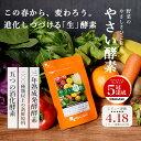 やさい酵素 (約3ヶ月分) ダイエット サプリメント 送料無料 野草 野菜 酵素 生酵素 原料 【M】 _S20