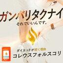 コレウスフォルスコリ ダイエット サプリ (約1ヶ月分) 送料無料 サプリメント イヌリン 食物繊維 フォルスコリ 燃焼…