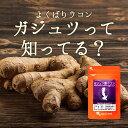 ガジュツ紫ウコン(うこん)粒(約1年分) 送料無料 サプリメント サプリ 3粒あたり紫うこん630mg。 お酒をすっきり!…