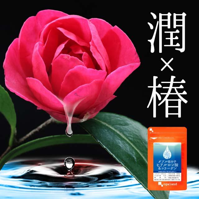 W低分子ヒアルロン酸&コラーゲン(約6ヶ月分) 送料無料 サプリ サプリメント ヒアルロン酸 コラーゲン オーガランド ヒアルロン酸 乾燥 する季節に 化粧水 ドリンクよりも手軽 大容量 【M】 【半年分】 _在管_JB_JH