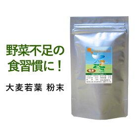 大麦若葉 粉末(100g)送料無料 サプリメント サプリ 健康茶 国内産大麦若葉使用 お茶 野菜不足 健康 青汁 美容 ダイエット 通販 限定 _JT_JH