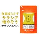 サラシアエキス(約6ヶ月分)送料無料 サプリメント サプリ ダイエット サラシア茶 オーガランド 油 糖分 油分 炭水化…