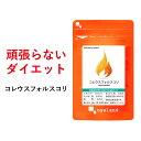 コレウスフォルスコリ(約1ヶ月分) 送料無料 サプリメント サプリ ダイエット イヌリン 食物繊維 フォルスコリ 燃焼…