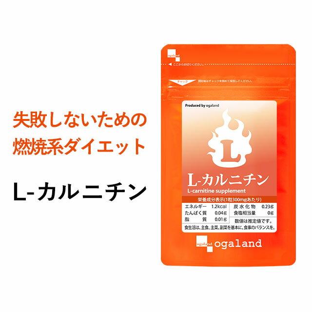 カルニチン サプリメント ダイエット 約3ヶ月分 送料無料 L-カルニチン BCAA アミノ酸 や α-リポ酸 や コエンザイムQ10 と併用◎ l-カルニチンフマル酸塩 オーガランド 口コミ 評判 低価格 【M】 _JD_JH