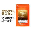 プロポリスゴールド(約3ヶ月分)送料無料 サプリメント サプリ 健康 フラボノイド アミノ酸 ミネラル ビタミン 乾燥 …