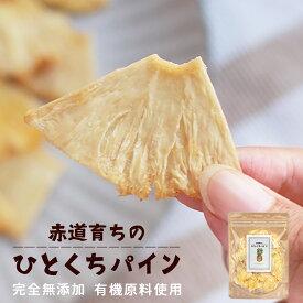 ひとくち パイン パイナップル (120g) 砂糖不使用 ドライパイナップル ドライパイン ドライフルーツ 有機 完全無添加 パインフルーツ 有機原料使用 一口サイズ ギルトフリー オガファーム ogafarm 送料無料