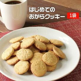 【500g】はじめてのおからクッキー [おからクッキー お試し 低糖質 ダイエット食品 満腹感 置き換え お菓子 ダイエットクッキー スイーツ クッキー レーズン 送料無料] メール便A TSG TN
