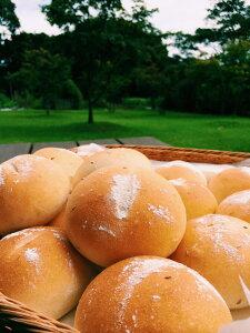 """おおがファームの自家製フランスパン おおがフランス15個入り 国産小麦粉""""春のいぶき""""使用"""