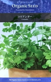 オーガニック・シード:コリアンダー ハーブの種 料理用 パクチー 香菜(シャンツァイ)