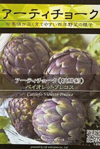 シード:アーティチョーク(バイオレットプレコス) 西洋野菜の種子 料理用
