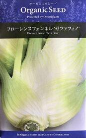 オーガニック・シード:フローレンスフェンネル(ゼファフィノ) ハーブの種 料理用