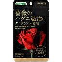 【殺菌剤ダニ剤】ダニダウン水和剤 2g(0.5g×4袋)