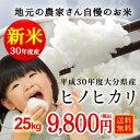 Hinohikari25 500