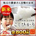 Koshihikari30 25kg