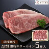 It is an entering five pieces of Oita product Bungo cow A5 rank surloin steak gift