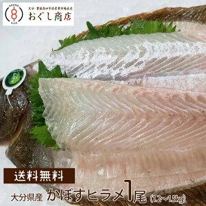 .【送料無料】日本一のヒラメ養殖の大分県から「かぼすヒラメ」1尾丸ごと( 1.2〜1.5kg)(冷蔵配送)/父の日 お中元 ギフト 海産物 海産 【代引き不可】【楽天限定セット】