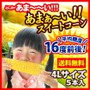 Corn mirai500 2017