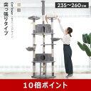 【ポイント10倍】キャットタワー 大型猫 突っ張り 猫タワー 爪とぎスロープ 送料無料 爪とぎ おもちゃ ハウス おしゃ…