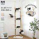 【先着順、18日20時から購入金額1.5万円以上5000円相当プレゼントあり】キャットタワー 大型猫 突っ張り 木登りタワー…