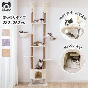 キャットタワー 大型猫 突っ張り 木登りタワー 透明宇宙船 窓付きの透明ステップ スリム 送料無料 全麻縄巻き 麻紐 爪とぎ おしゃれ 室内 据え置き 運動不足 コンパクト かわいい 多頭飼い