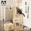 【SALE×ポイント5倍!18時から】キャットタワー 大型猫 キャットタワー おしゃれ 猫 タワー 送料無料 爪とぎ おもちゃ…