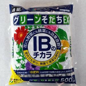 粒状肥料 花ごころ グリーンそだちEX 500g 緩効性肥料
