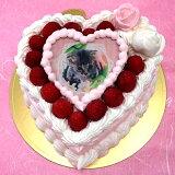 写真ケーキスイートハートケーキバースデーケーキお誕生日パーティー記念日サプライズ7号