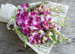 洋蘭:デンファレとグリーンの花束【送料無料】供花常温便お中元サマーギフトサマーギフト