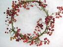 エダモノ サンキライリース(1個) 切花 生け花 花材 ドライフラワー クリスマス