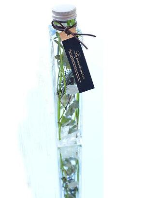 ハーバリウムギフト花材ドライフラワー海サンゴハーバリュウム西海岸インテリアおしゃれ雑貨インテリアグリーン結婚祝い退職祝いシリコンオイル瓶Herbarium植物標本デルフィブルーお中元グリーン