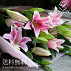 大輪系ピンクユリとグリーンの花束25輪ゆり百合