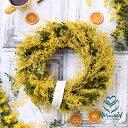 『ミモザ・リース』 花 誕生日 送別 新築祝い 結婚祝い お礼 歓送迎ドライフラワー リース スワッグ インテリア 春 玄…