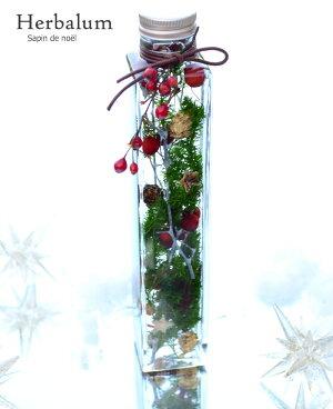 ハーバリウムギフト花材ドライフラワー海サンゴハーバリュウム西海岸インテリアおしゃれ雑貨インテリアグリーン結婚祝い退職祝いシリコンオイル瓶Herbarium植物標本デルフィブルーグリーン