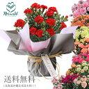 カーネーション 鉢植え 鉢 5号 母の日 ギフト 母の日 プレゼント 鉢植え 花 5号カーネ 選べる11色 赤 レッド ピンク メッセージカード…