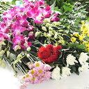 お供え 25本セット お悔み 彼岸 供える 供花 和花 お墓参 花 菊 長持ち 生花 花束