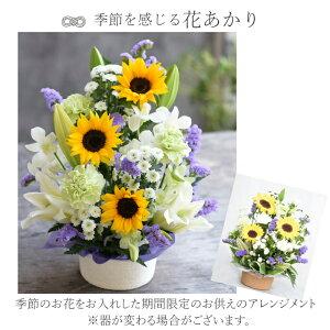 季節の花あかり