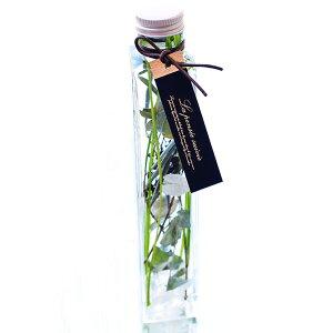 プレゼントハーバリウムギフトハーバリュウムおしゃれ誕生日結婚祝い退職祝い2019祝いシリコンオイルミモザHerbarium植物標本