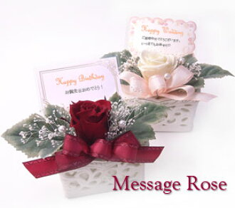 Preserved Flowers Same Day Delivery Birthday Gift Wedding Congratulations Students Celebrate Graduation St Patricks Telegram