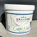 Calkwall 1 25 sam