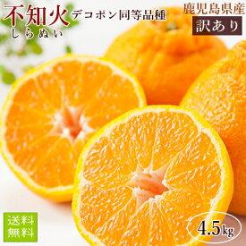 しらぬい4.5kg(デコポン同等品種) 送料無料 ご家庭用 鹿児島県産