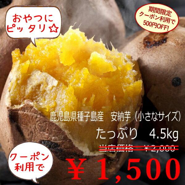 (クーポン利用で500円OFF!)小さな安納芋5k箱(内容量約4.5k) 送料無料 訳あり ご家庭用 さつまいも