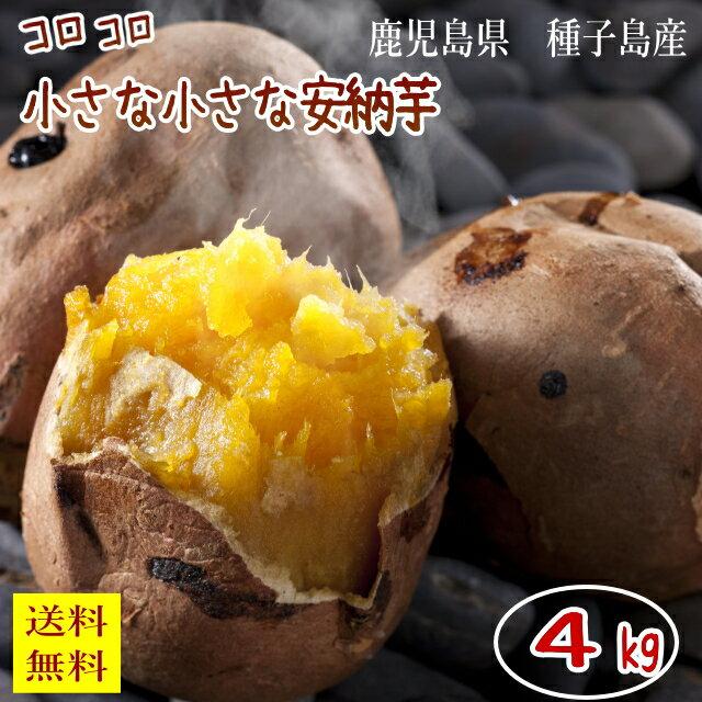 小さな安納芋(内容量約4k) 送料無料 訳あり ご家庭用 さつまいも 5k箱