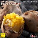 【予約☆10月下旬より発送開始】「小さな安納芋(内容量約4k) 送料無料 訳あり ご家庭用 さつまいも 5k箱【10月下旬…
