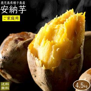 【予約・10月末発送】(訳あり)安納芋4.5kg 送料無料(ご家庭用)さつまいも5kg箱(内容量4.5kg)【10月下旬頃より発送開始】