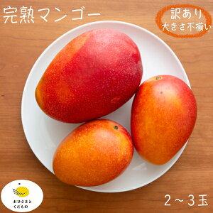 (家庭用・訳あり)マンゴー 2玉(約600g)(大きさおまかせ)送料無料 クール便発送 【6月中旬より収穫開始】