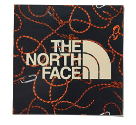 ザ・ノースフェイス THE NORTH FACE TNFプリントステッカー プリントステッカー NN31710-RP (ロープ)